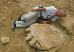 dinosaur footprint in Mangolia