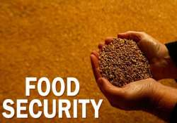 india to seek permanent solution to food security issue at