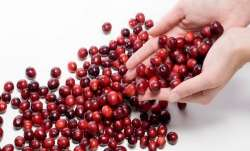 Pay attention! Cranberry decreases the risk of UTI
