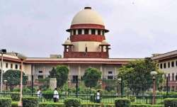 Ayodhya case: Advocate for Ram Lalla tells SC that pictures
