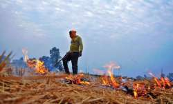 Mathura farmer, stubble burning,