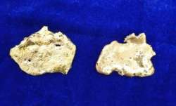 Gold worth Rs 29.4 lakh recovered from rectum of two