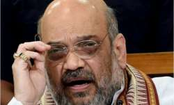 Amit Shah emphasises on more Rapid Antigen test for COVID-19; early hospitalisation