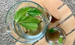 10 health benefits of mint leaves, Pudina benefits, mint leaves,mint leaves benefits, mint leaves cu