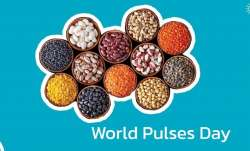World Pulses Day: Know the benefits of adding protein-rich dals to your diet